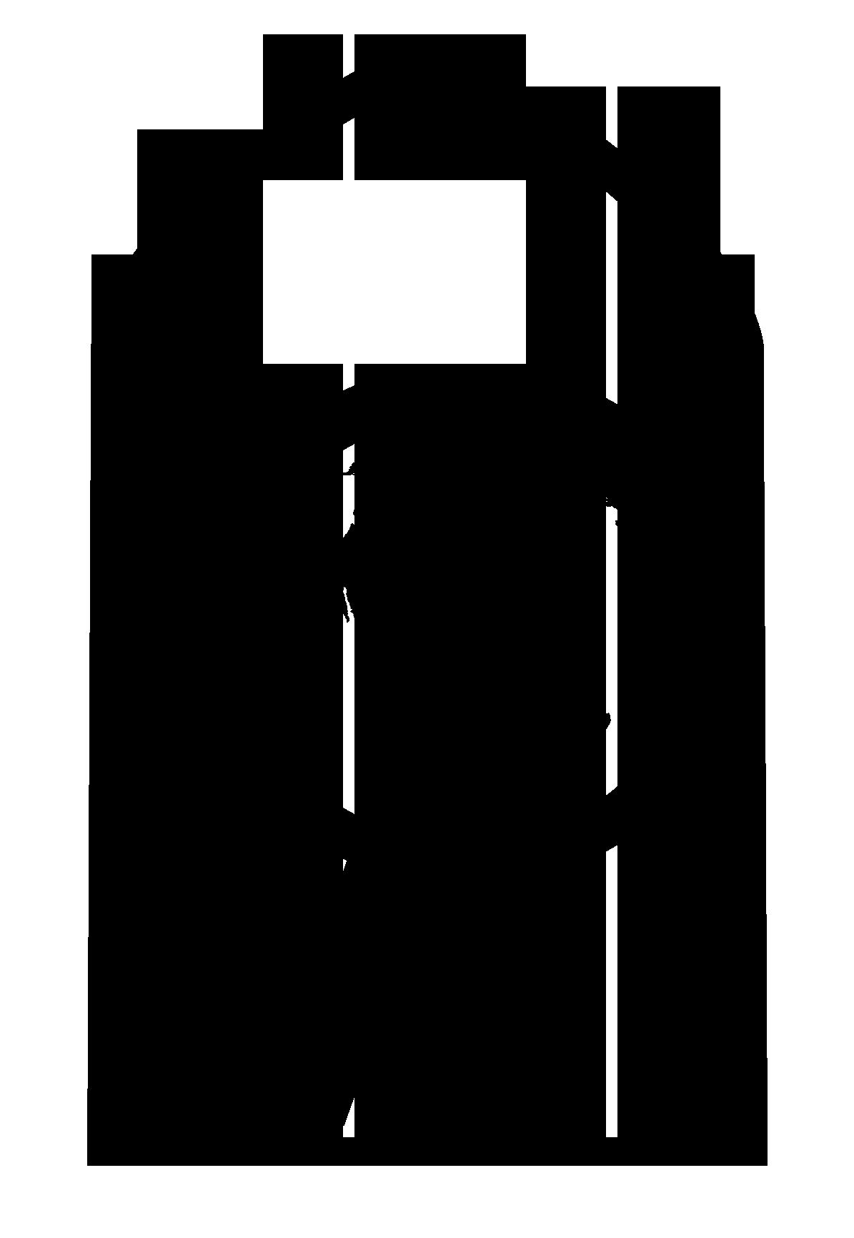 logo-Stichtingh Alcance Victoria