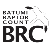 logo-Stichting Batumi Roofvogel Club