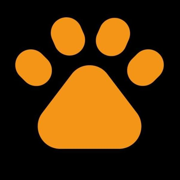 logo-Stichting Lets Adopt International