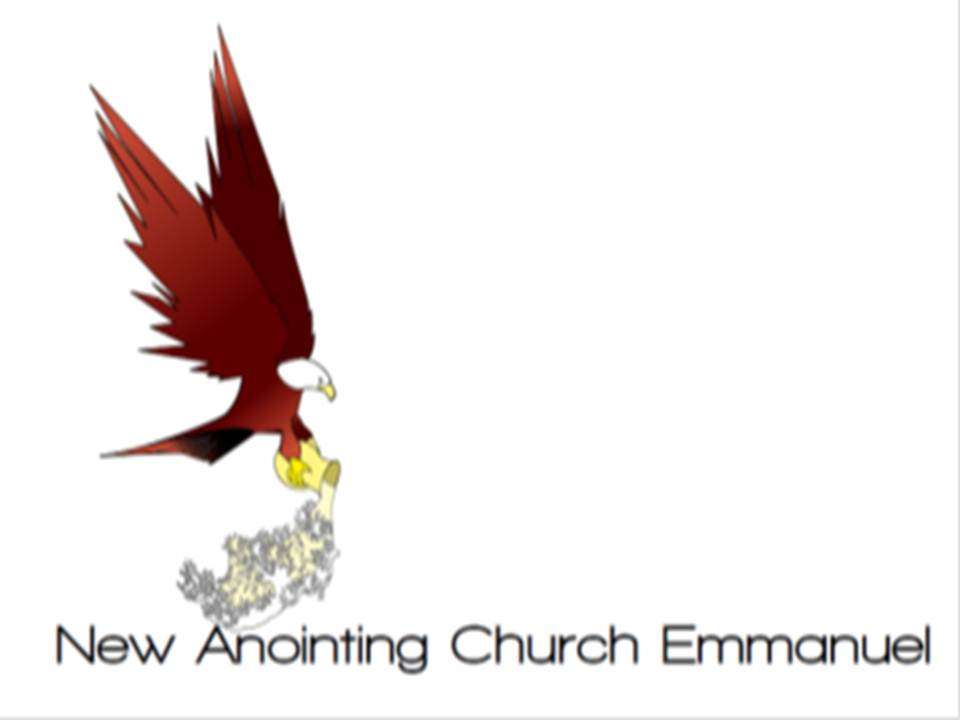 logo-Stichting New Anointing Church Emmanuel